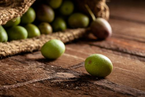 olive-2016